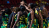 Taini Jamison Trophy: Sunshine Girls defeat Silver Ferns on day two
